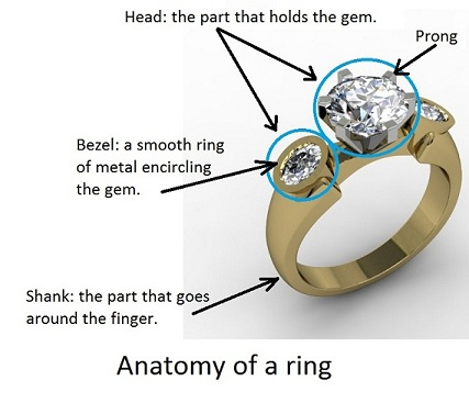 anatomy of ring